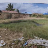 PT. Bank BRI Cabang Merauke melelang: 1 (satu) bidang tanah luas 340 m2 terletak di Kabupaten Merauke